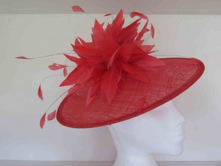 Feathered hatinator in coral