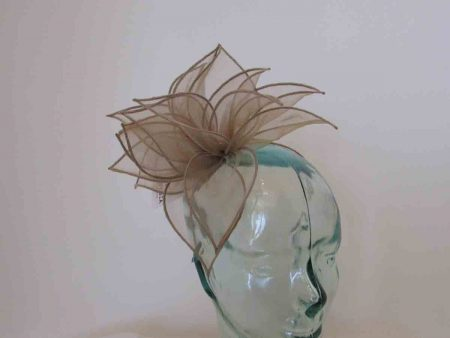 Chiffon fascinator in mink
