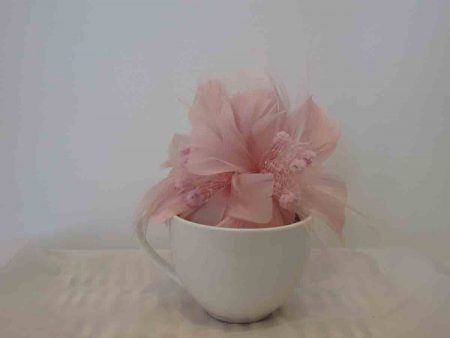 Feathered fascinator in chalk pink
