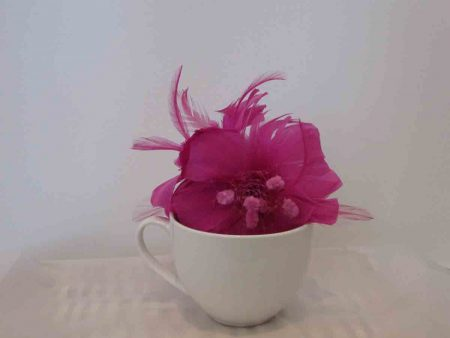 Feathered fascinator in magenta pink