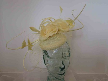 Rose pillbox with quills in buttercup yellow