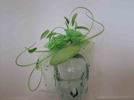 Rose pillbox with quills in lime