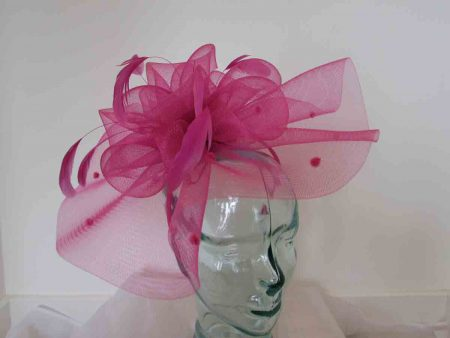 Crin spotted fascinator in fandango pink