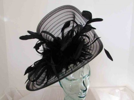 Pleated crin fascinator with feathers in black