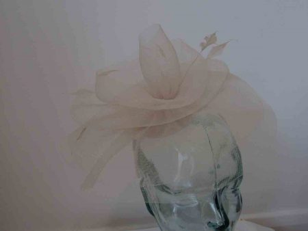 Crin swirl fascinator in champagne