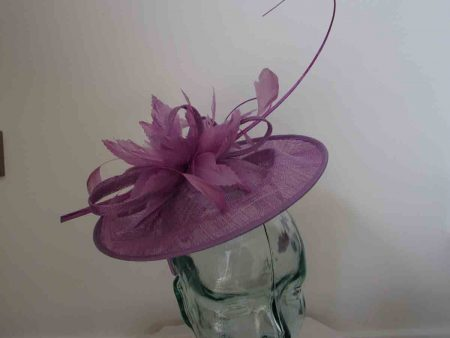 Curicular hatinator with feathered flower in orchid