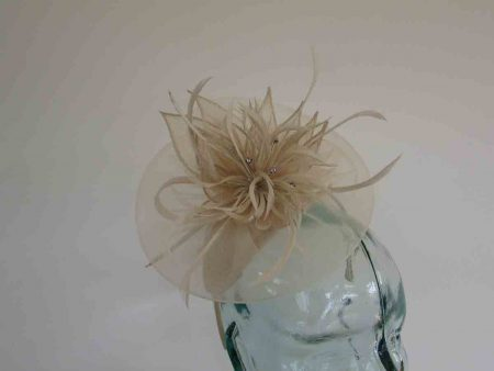 Chiffon fascinator  with lily flower in champagne