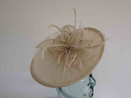 Small hatinator with chiffon flower in champagne