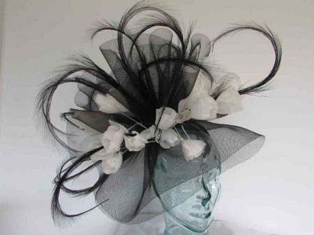 Large swirl of crin  fascinator in black with white feathered flowers